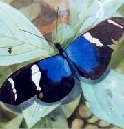 Artwork by artist Dorothée du Mesnil
