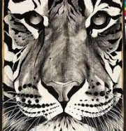 Artwork by artist Rose  Corcoran