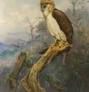 Artwork by artist George Edward  Lodge